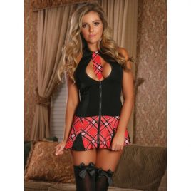 Exposed Cheap Thrills Very Private Sexy Schoolgirl Costume
